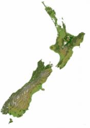 Kiwi Translation - Certified Translation Services for all of NZ